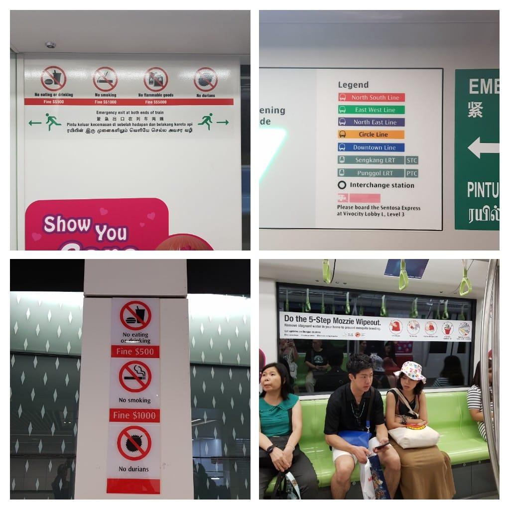 Singapur zakazy