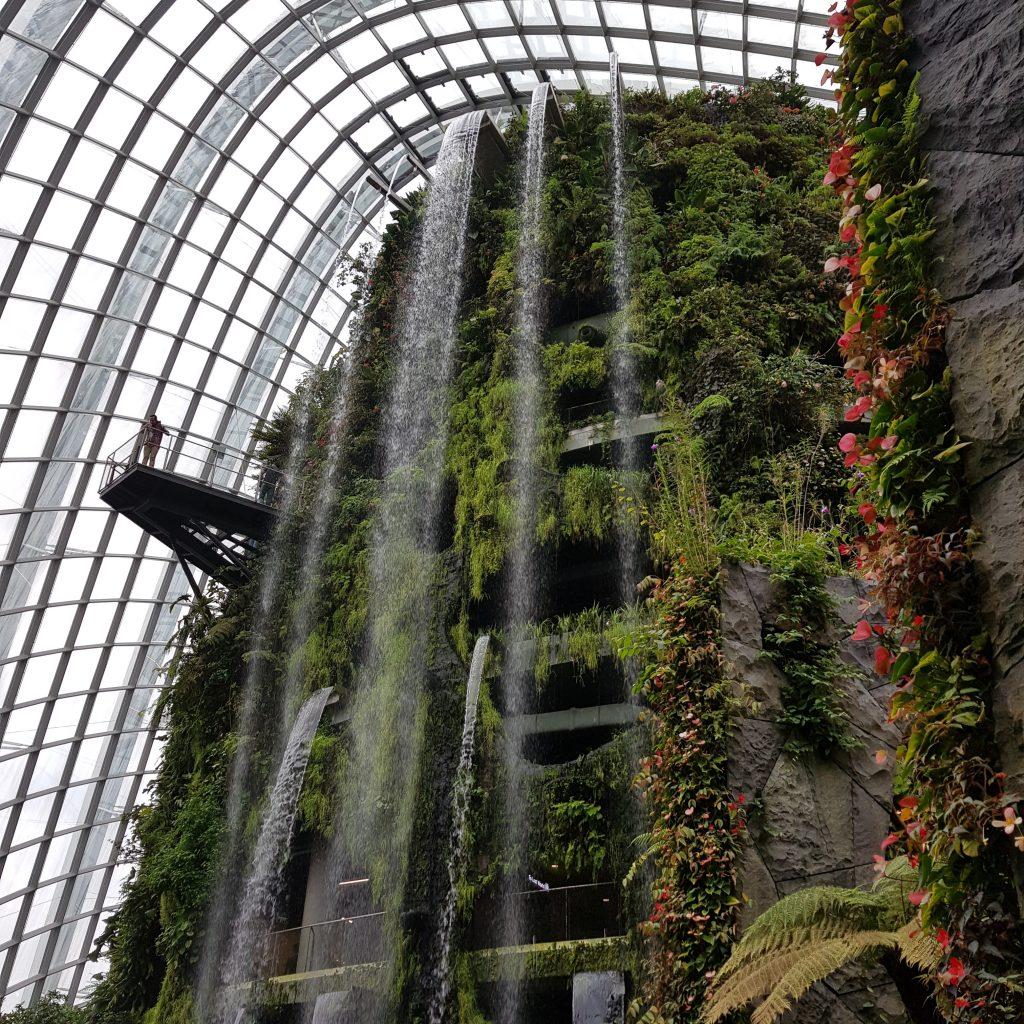 zobaczyć Singapur cloud forest