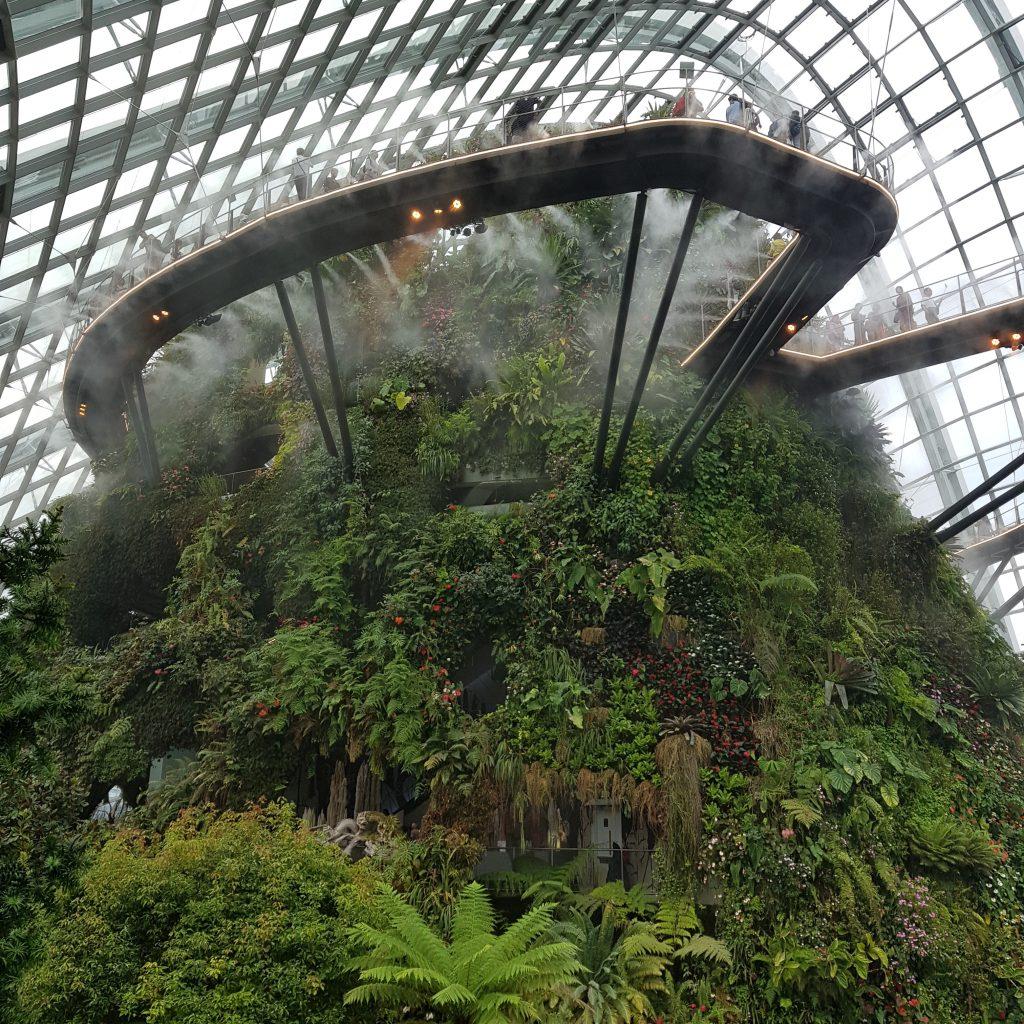 zobaczyć Singapur cloud forest 2