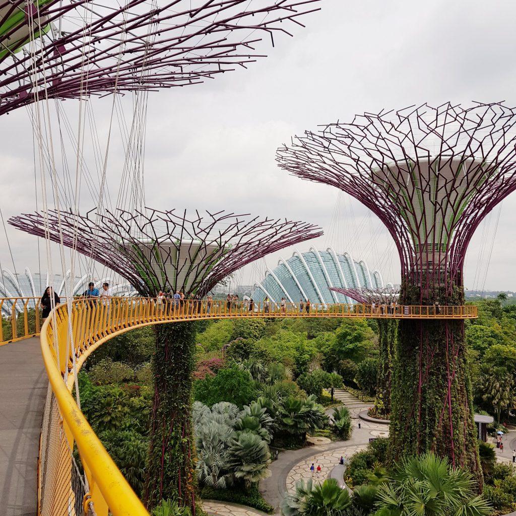 zwiedzić Singapur kładka