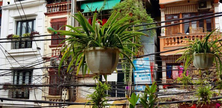 Przed wyjazdem do Wietnamu | mini przewodnik