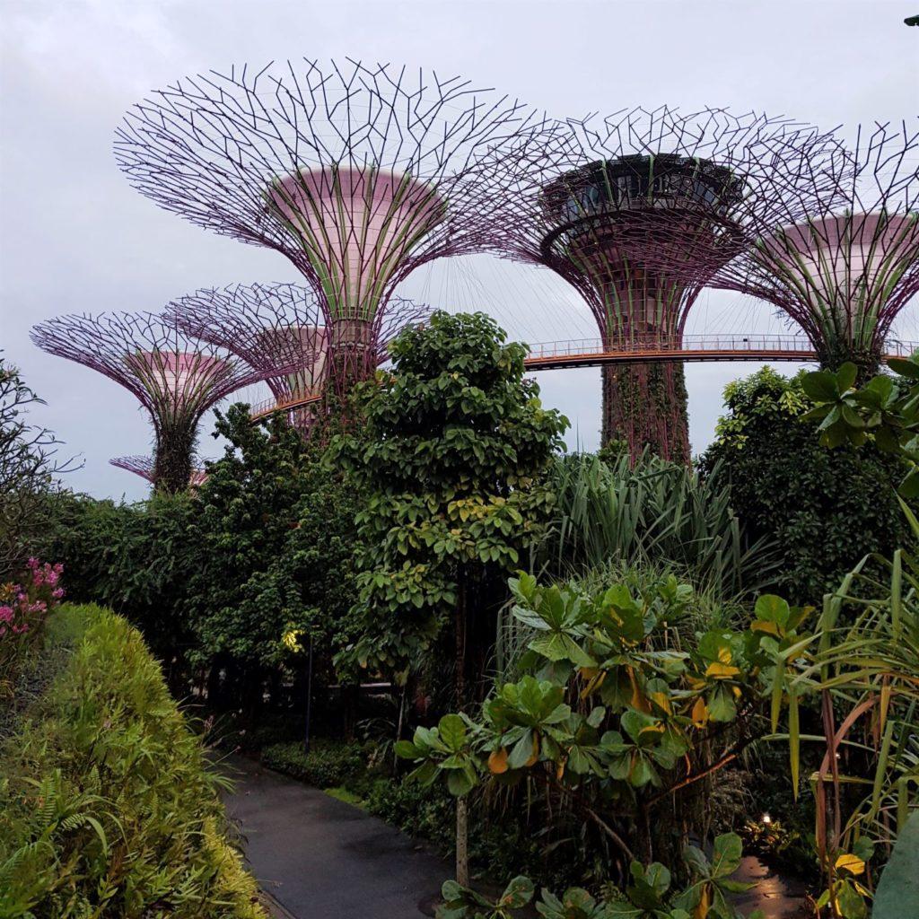 Singapur Ogrody nad Zatoką