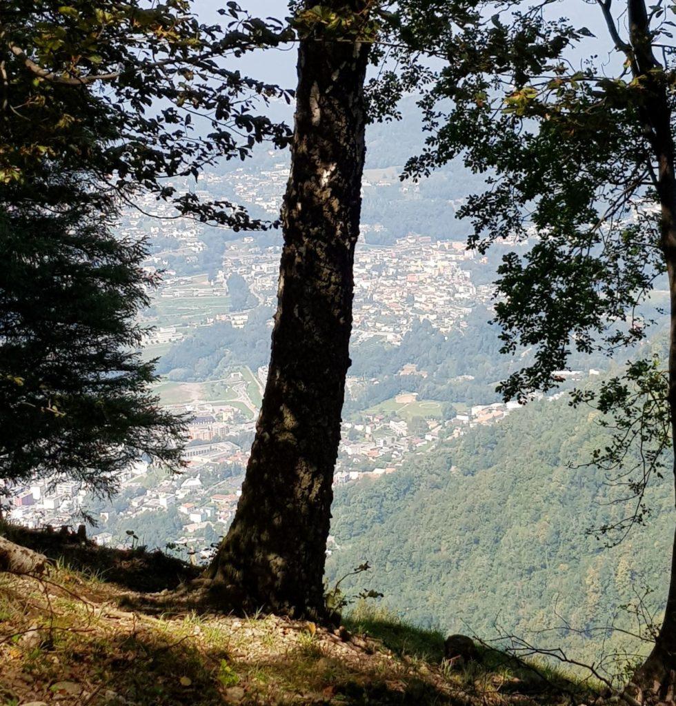 Z Monte Bre