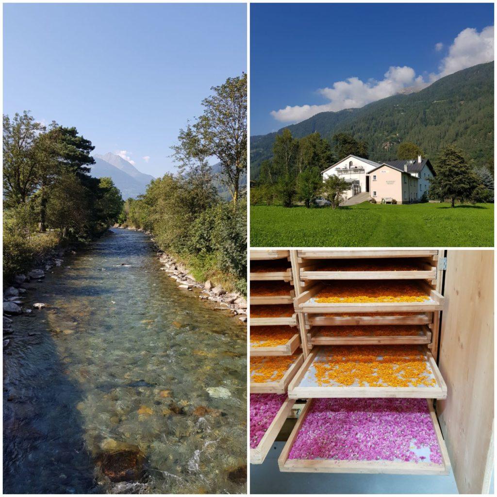 poziągiem po Szwajcarii - Raselli - suszarnia ziół i kwiatów